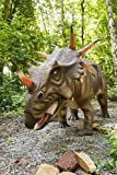 Styracosaurus Dinosaur Journal: 150 page lined notebook/diary