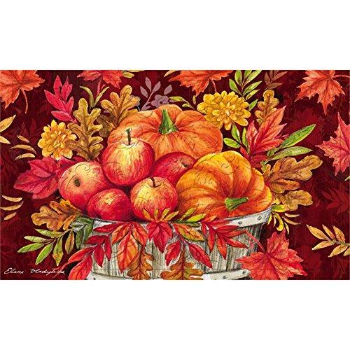 (Evergreen Garden 41EM2361 Apple Basket Floor Embossed Door Mat, Multicolor)