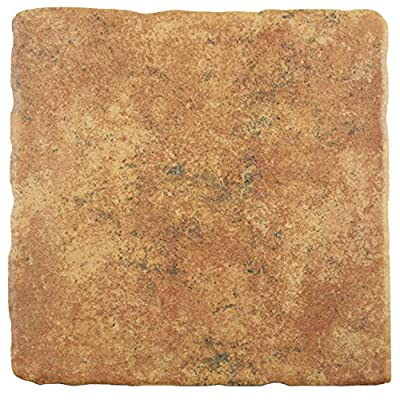 """SomerTile FEB8COSM Cana Marron Ceramic Floor and Wall Tile, 7.75"""" x 7.75"""", Brown/Green"""