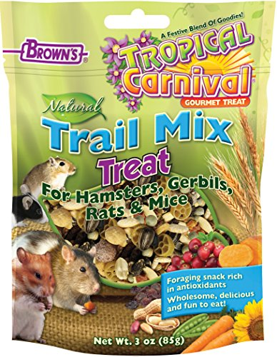 F.M. Brown's Tropical Carnival Natural Trail Mix Treat for Hamsters, Gerbils, Rats and Mice, Foraging Snack Rich in Antioxidants, (Tropical Carnival Hamster Food)