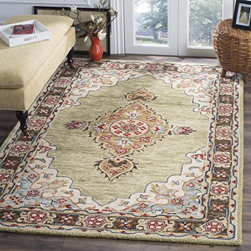 Safavieh Aspen Collection APN506A Sage and Brown Premium Wool Area Rug 8' x 10'