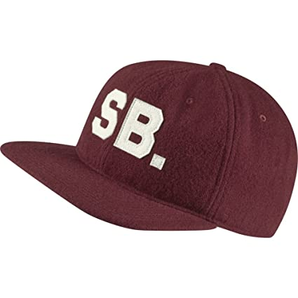6752dc199675a Image Unavailable. Image not available for. Color  Nike SB Infield Pro  Adjustable Hat