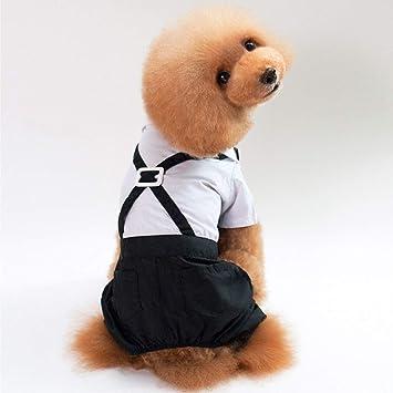 DF-ES Traje para Mascotas Vestido para Perros Traje para ...