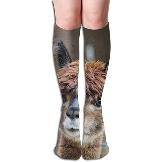 4435d147c Image Unavailable. Image not available for. Color  Fluffy Alpaca Wool Funny  Athletic Socks Best Knee High ...