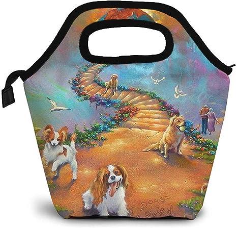 Lunch Tote Rainbow Bridge Todas Las Mascotas Perros Escalera Al Cielo Mujeres Bolsas De Almuerzo Premium Bolso Bolso De Almuerzo Loncheras De Almuerzo Bolso Gourmet Aislado Para Niños Bolso De P: Amazon.es: