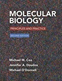 Molecular Biology 2nd Edition