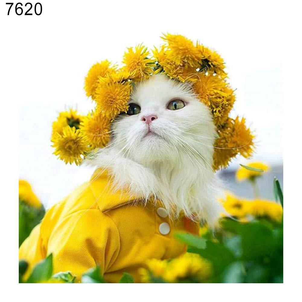 wsloftyGYd DIY Cute Cat Animal Partial Diamond Painting DIY Cross Stitch Embroidery Wall Decor 7579