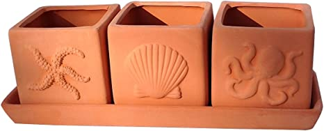 Terracotta Set Of 3 Small Square Seascape Embossed Earthenware Planters Or Herb Square Pots With Tray Garden Outdoor