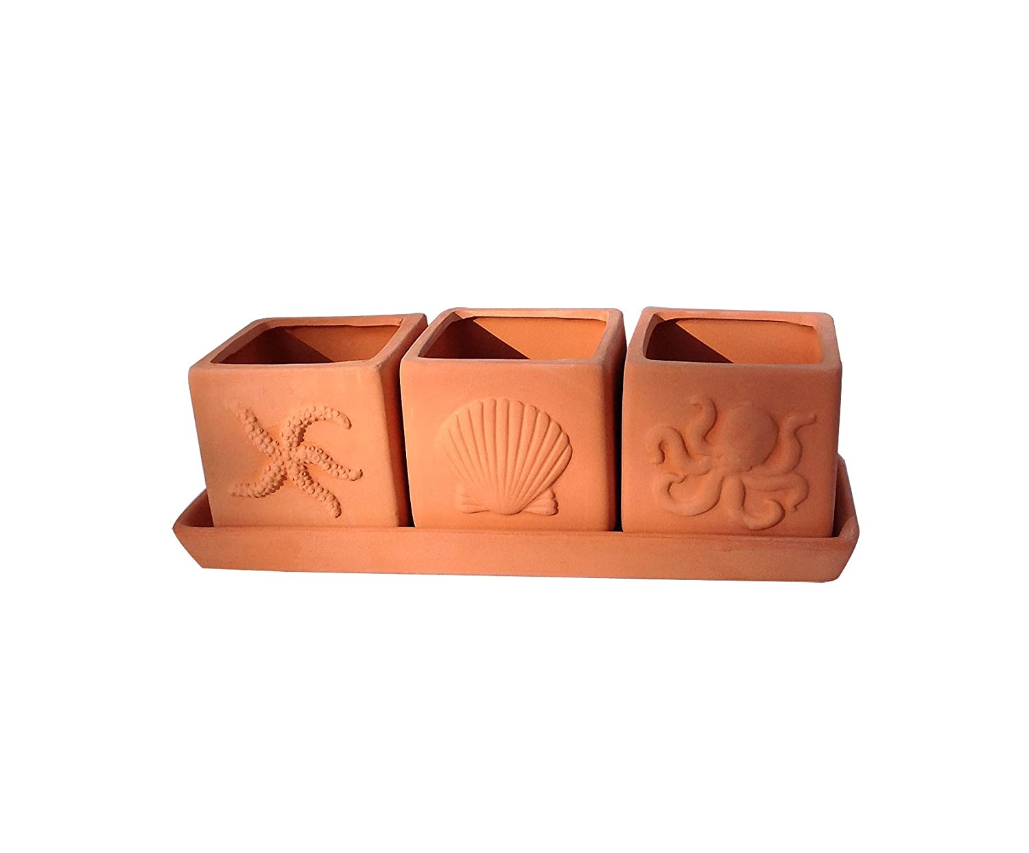 Terracotta Set of 3 Small Square Seascape Embossed Earthenware Planters or Herb Square Pots with Tray