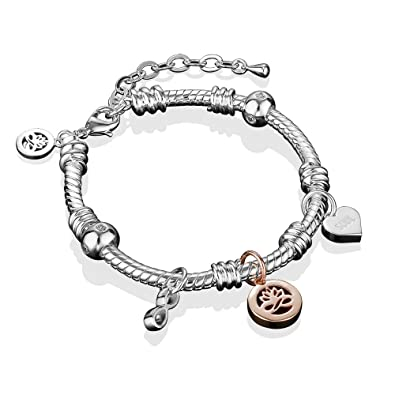 c01a332a0da22 Image Unavailable. Image not available for. Color  Newbridge Silverware  Silver Plated Charm Bracelet
