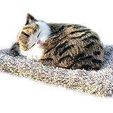 Extrbici 車や部屋の置物 飾り 可愛い 小動物 竹炭入れ 空気浄化 癒し系 プレゼント 贈り物 (ネコちゃん)