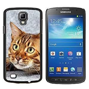 TECHCASE---Cubierta de la caja de protección para la piel dura ** Samsung Galaxy S4 Active i9295 ** --Gato de Bengala Casa gatito felino Mascota