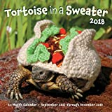 Tortoise in a Sweater 2018: 16-Month Calendar September 2017 through December 2018