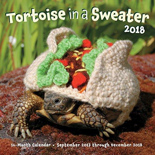 Tortoise In A Sweater 2018  16 Month Calendar September 2017 Through December 2018