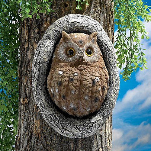 Design Toscano Knothole Owl Tree Sculpture (Set of 2) by Design Toscano