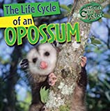 The Life Cycle of an Opossum, Barbara M. Linde, 1433946807