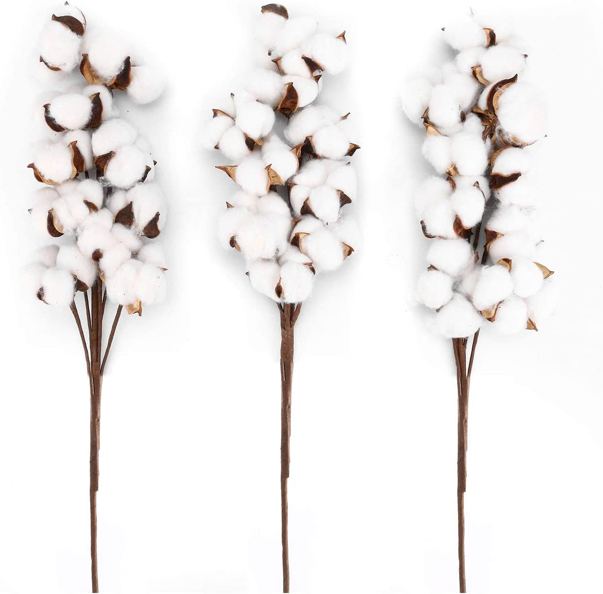 Pack of 3 Cotton Stems Cotton Flowers, Dried Flowers, 10 Balls Each, Farmhouse Style Display Vase Filler, Rustic Decorations Home, Office, 21 inches, Wedding Centerpiece, by Crystal Lemon