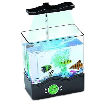Mini Tanque De Peces Ornamentales Acuario Ecológico Multifuncional Tanque De Peces USB Iluminación De Lámpara De Mesa Clear Turtle Box,Black: Amazon.es: ...