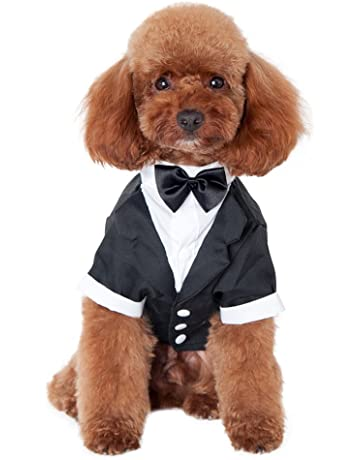 bdb80cb62e3 Amazon.com  Costumes - Apparel   Accessories  Pet Supplies