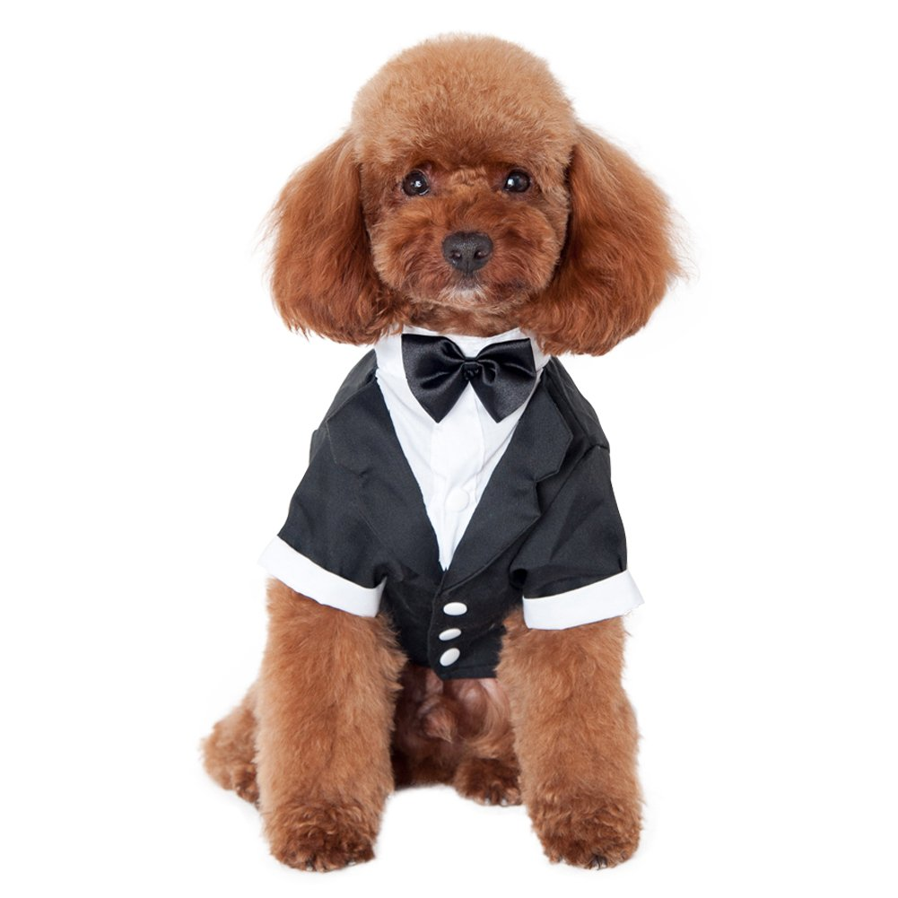 Kuoser Dog Shirt Puppy Pet Small Dog Clothes, Stylish Suit Bow Tie Costume, Wedding Shirt Formal Tuxedo with Black Tie, Dog Prince Wedding Bow Tie Suit (L(Back: 12'',Chest: 17'',Neck:12''), Black)