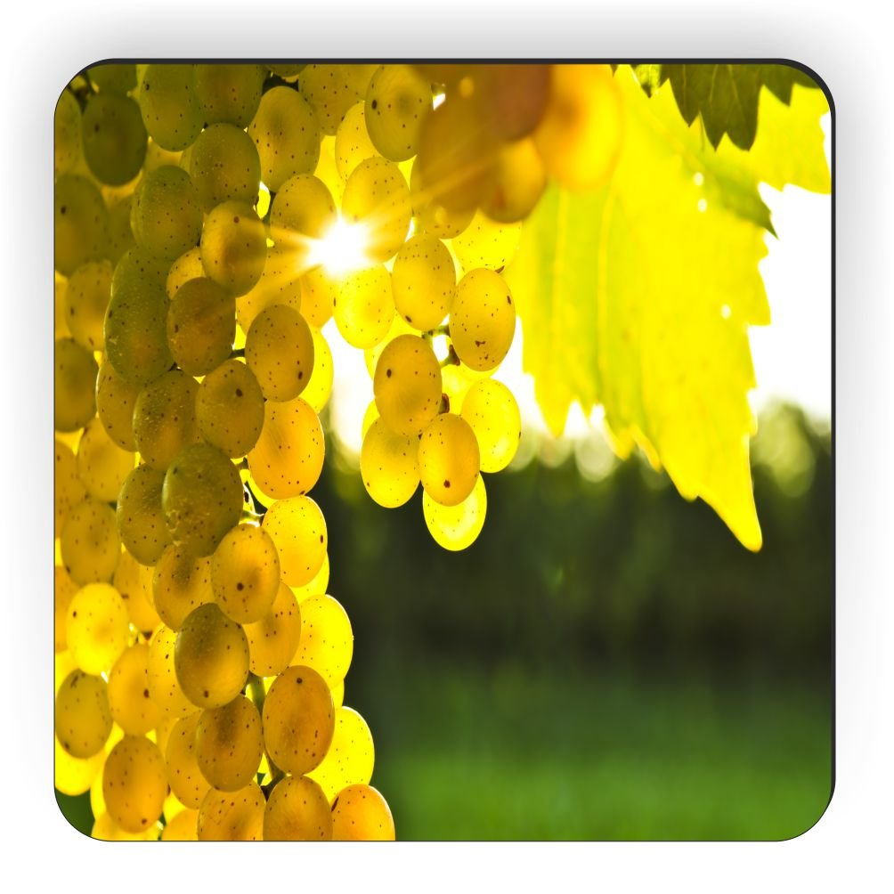 Rikki Knight Yellow Grapes on The Vine Design Square Fridge Magnet