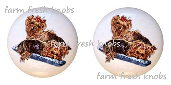 SET OF 2 KNOBS   Yorkshire Terrier Yorkie Dog   Dogs   DECORATIVE Glossy  CERAMIC Cupboard
