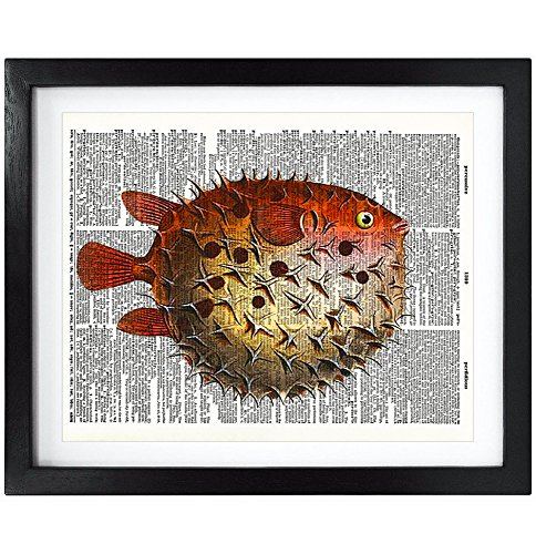 8X10 Unframed Cute Puffer fish Ocean Life Upcycled Vintage Dictionary Art Print Book Art Print Home Décor Kids Wall Art V063 (Fish Dictionary)