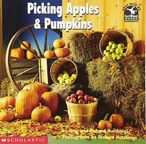 Picking Apples and Pumpkins - Green Picking Apples