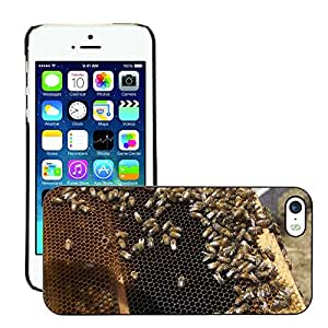Hot Style Cell Phone PC Hard Case Cover // M00109525 Honey Honeybee Honey Jar Bee Insects // Apple iPhone 5 5S 5G