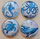 SEA Ocean Animal Glass Magnet set of 4 turtle whale seahorse octopus