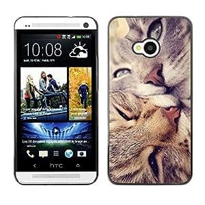 TopCaseStore / la caja del caucho duro de la cubierta de protección de la piel - American Shorthair Curl Cats Kiss Love - HTC One M7