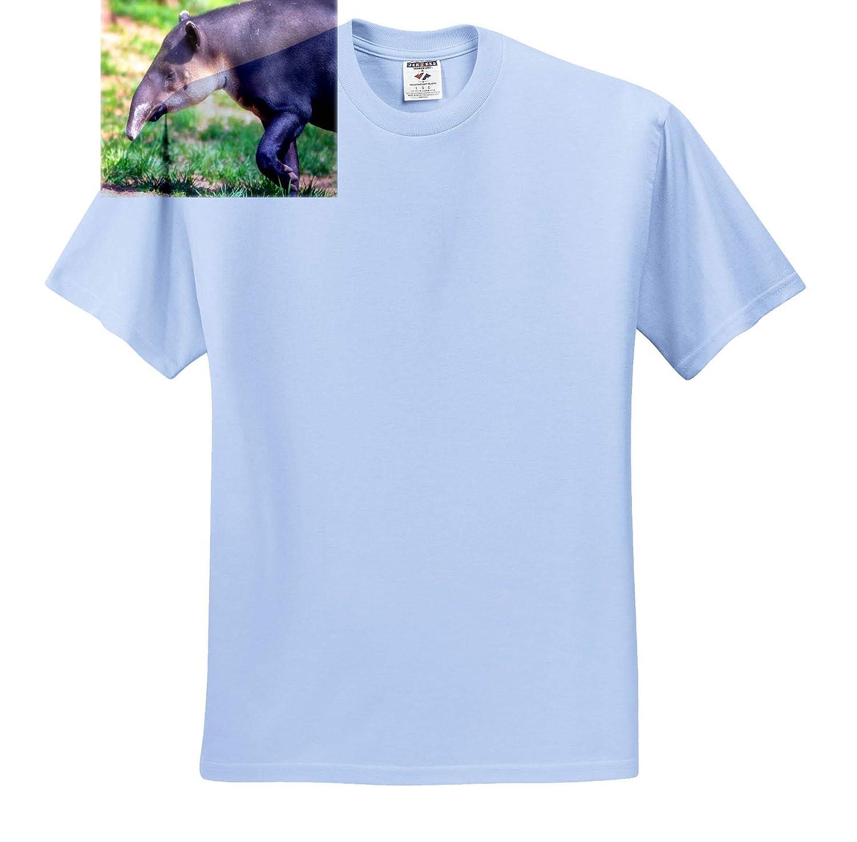 Animals T-Shirts Tapir Portrait 3dRose Mike Swindle Photography