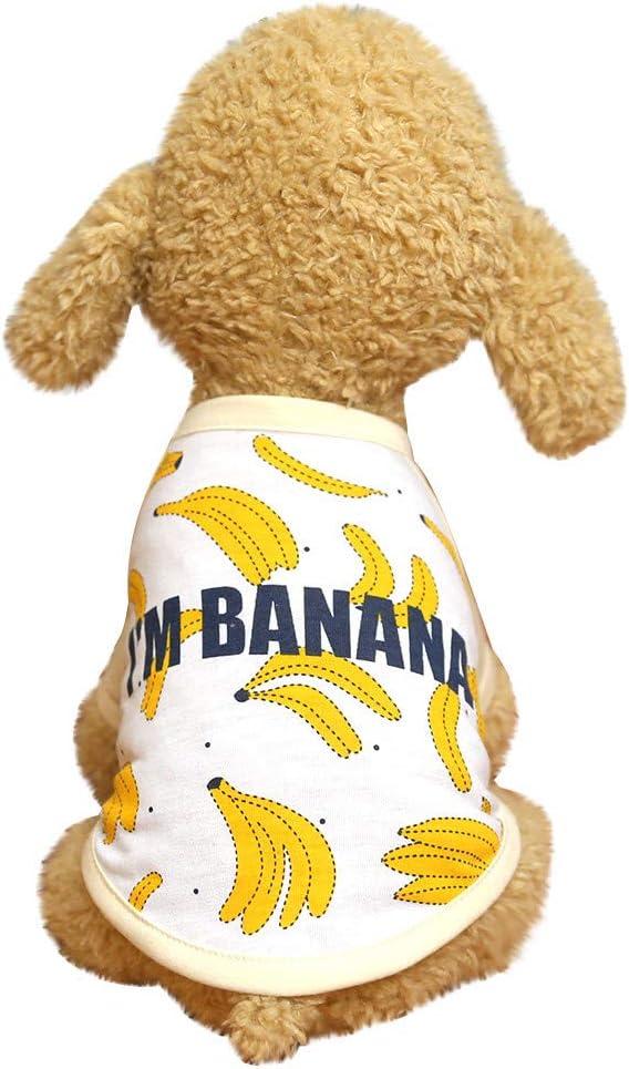 Sylar Ropa para Mascotas, Camiseta De Manga Corto para Perros Ropa Chaleco Verano Abrigo Disfraces Traje con Impresión De Frutas