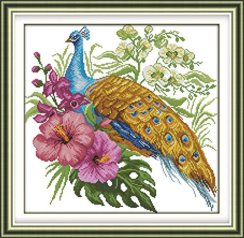 Eafior DIY Cross Stitch Kits Handmade Needlework Embroidery Kits Peacock pattern printed design Home Decoration Wall Decor 52x51cm(No (Peacock Embroidery Designs)