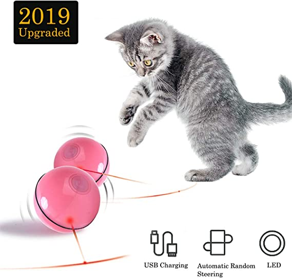 USB Rechargeable Newest Version -Green ZCOINS Cat Interactive Toys Entertainment Cat Chaser Balls for Indoor Cats Exercise Toys Automatic Self-Rotating LED Light white