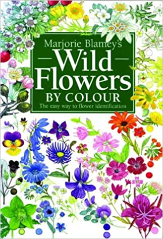 Identify Wildflowers By Colour on Wildflower Id Book For Kids
