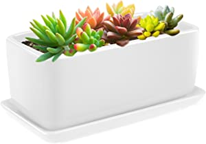 Flexzion 10 Inch Rectangular Ceramic Succulent Planter Pot - Cactus Herb Flower Container Window Box Holder with Removable Drip Tray Base for Tabletop Desktop Indoor Outdoor Home Office Garden (White)