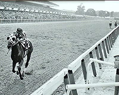 Secretariat Wins At Belmont Poster Art Photo Great American Horses Poster Photos