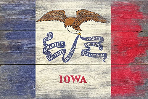Iowa State Flag - Barnwood Painting Collectible Art Print, Wall Decor Travel Poster