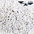 4-lbs Mini White Synthetic River Pebbles, Decorative Accent Stones Vase Fillers, 0.25 to 1-Inch Stones