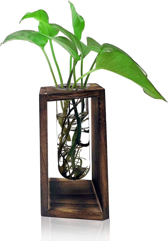 Plant Terrarium Transparent Desktop Glass Planter Test Tube Vase with Retro Solid Wooden Stand for Hydroponics Plants Home Garden Wedding Decor