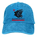 LETI LISW Flag of CaliforniaClassicDenim Cap Adult Unisex Adjustable Hat