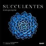 Succulentes - Le design végétal