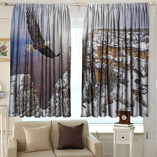 Black Out Window Curtain Africa Aerial View of Bald Eagle Flying in The Snow Covered Grand Canyon Rocky Arizona USA Energy Efficient, Room Darkening 72 W x 63 L Inches White Brown (Best Dove Hunting In Arizona)