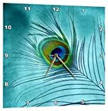 3dRose Peacock Feather on TURQUOISE Background – Wall Clock, 13 by 13-Inch (dpp_211236_2) Review