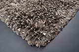 Rolex Dark Gray 7'x10′ Shimmery Silk Shaggy Shag Area Rug Solid shaggy Design Quality Long High Pile Soft Iridescent Sheen Ultra Plush