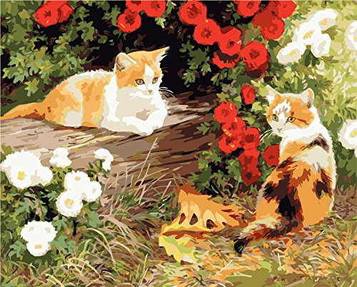 Paint By Number Animals Cats
