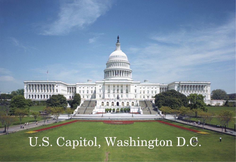 U.S. Capitol Building, Washington DC, Congress, Capitol Hill, Magnet 2 x 3 Photo Fridge Magnet