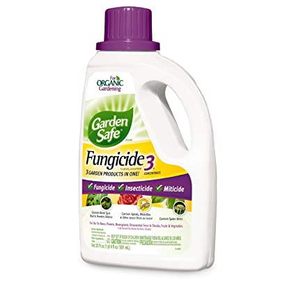 Garden Safe Brand Fungicide3 Concentrate, 20-Ounce