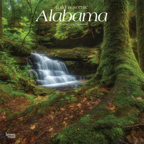 QUALITY 2019 ALABAMA WILD AND SCENIC Wall Calendar-Best Holiday Gift Ideas -Great for mom, dad, sister, brother, grandparents, gra gay,PLANNER, CALENDAR PLANNER,CALENDAR WALL,POCKET, CALENDAR MONTHLY.